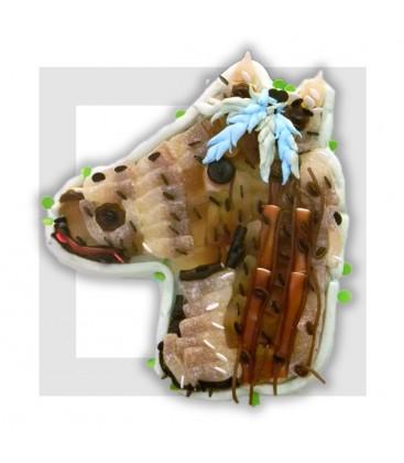 PONY cheval en composition de bonbons